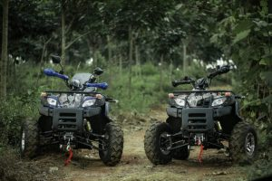 atv-200-forest-trail-11
