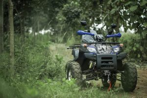 atv-200-forest-trail-3