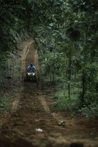 atv-200-forest-trail-7