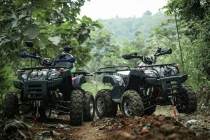 atv-200-forest-trail-8